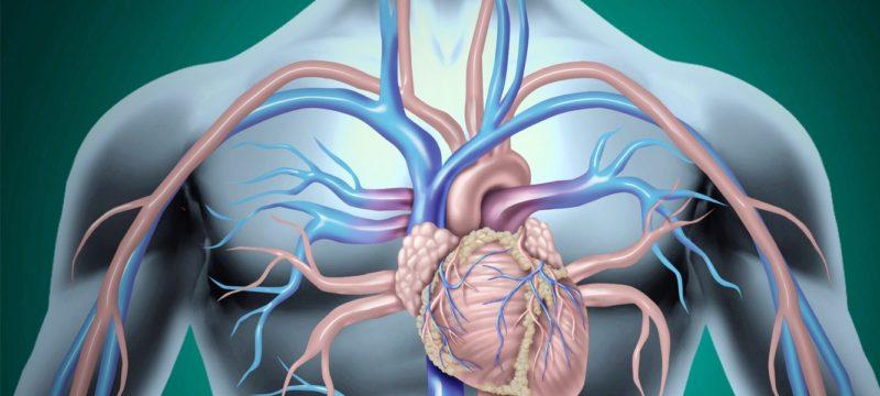 Sintomi di trombosi di mezenterialny
